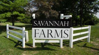 Savannah Farms