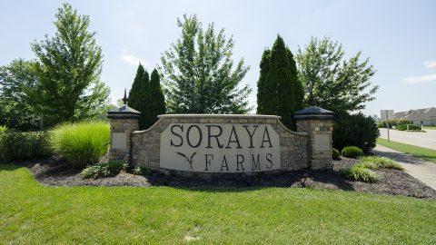 Soraya Farms